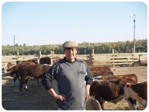 Скороспелость французских мясных пород