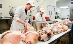 Улучшение мясных качеств крупного рогатого скота