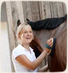 Мясная продуктивность взрослых лошадей