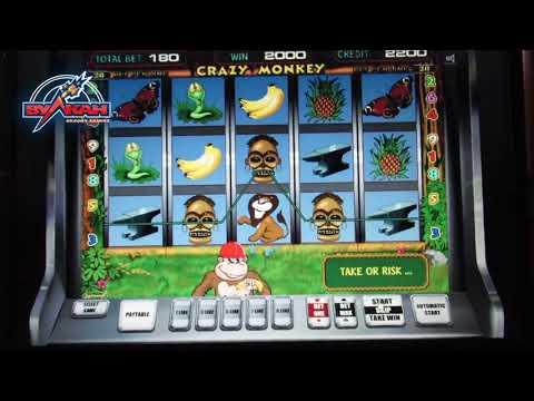 Казино онлайн выигрывать игровые автоматы fruit сocktail